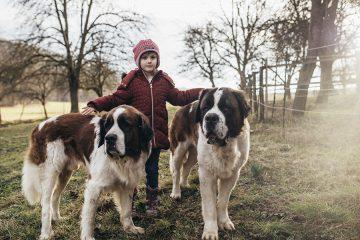Familiengeschichten_Sabine-Kneidinger